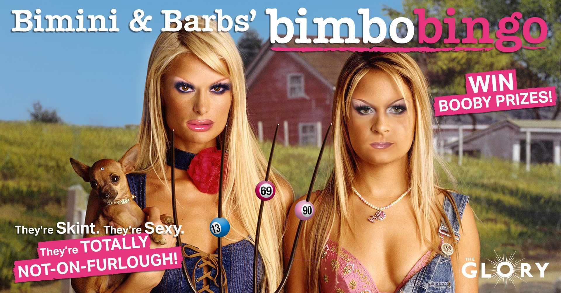 Bim and Barbs' Bimbo Bingo